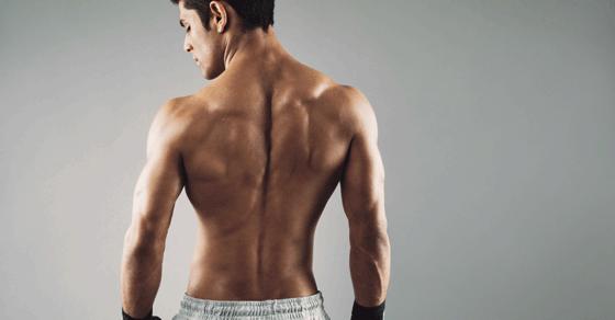 鍛えにくい「体の裏側」、背筋・腰周りの筋トレ法【動画】