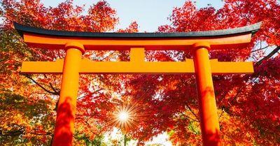 恋愛成就に効く!東京にある縁結び神社まとめ 12選