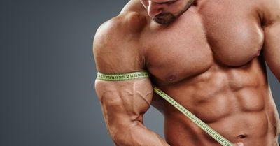 新発見!筋肉を鍛えることが、体の健康に良い本当の理由10選