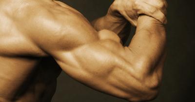 【永久保存版】プロが教える、ゴツい腕を簡単に作る方法