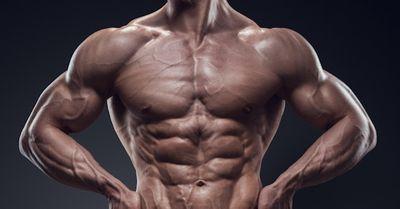 バキバキに体を鍛える、腕・胸・背中・腹・尻の筋トレ法【動画あり】
