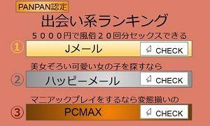 PANPAN認定出会い系ランキング3位「マニアックプレイをするなら変態揃いの」PCMAX