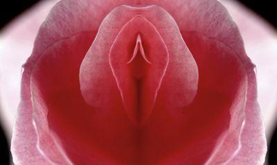 AV女優は生理のとき撮影するの?|緊急対処方は膣に海綿を入れる