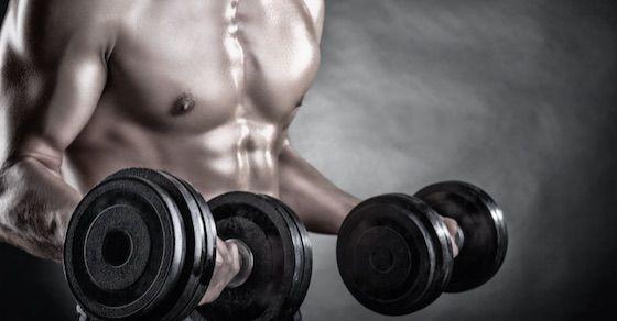 エピカテキンで効率的に筋肉増加