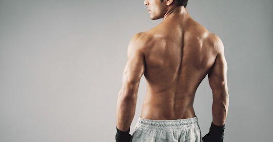 お腹が凹まない原因を断つには背中の筋トレが効く