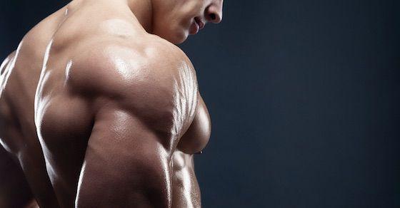 筋トレの基本1:まず大きい筋肉から鍛える