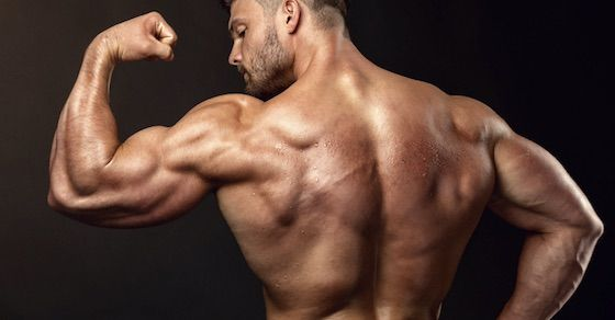 お腹を凹ませたいなら大きな筋肉を鍛えよう!