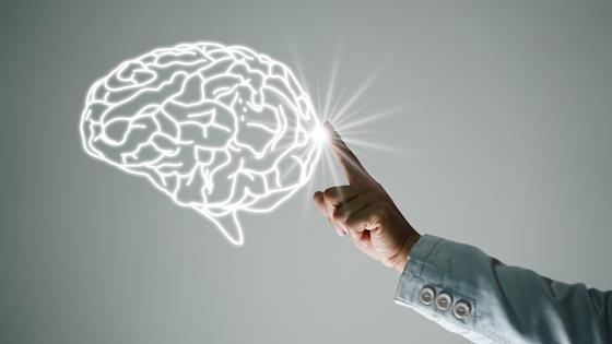 オナニー 脳細胞